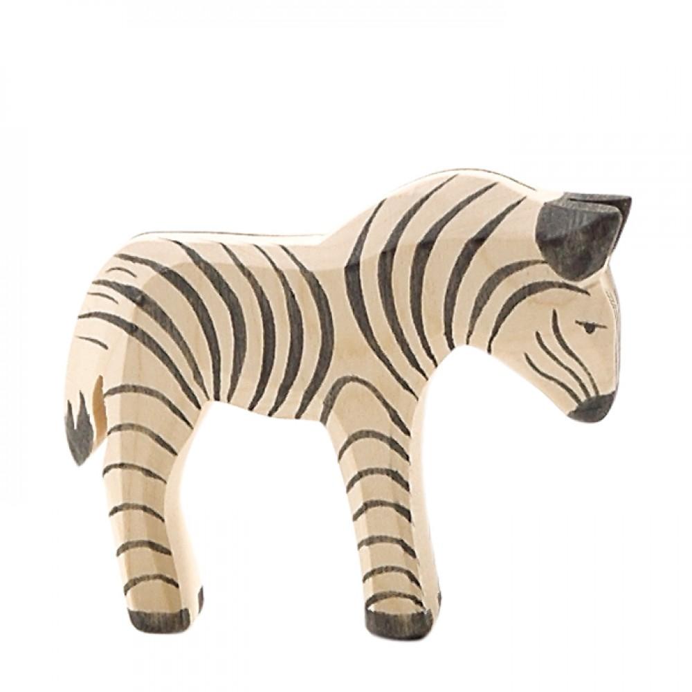 Ostheimer lille zebra-31