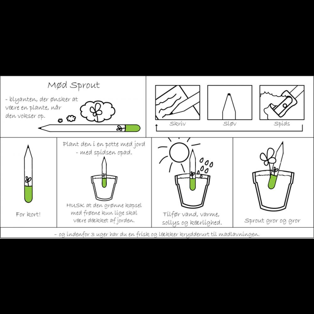 Sprout plant din blyant flere varianter-31