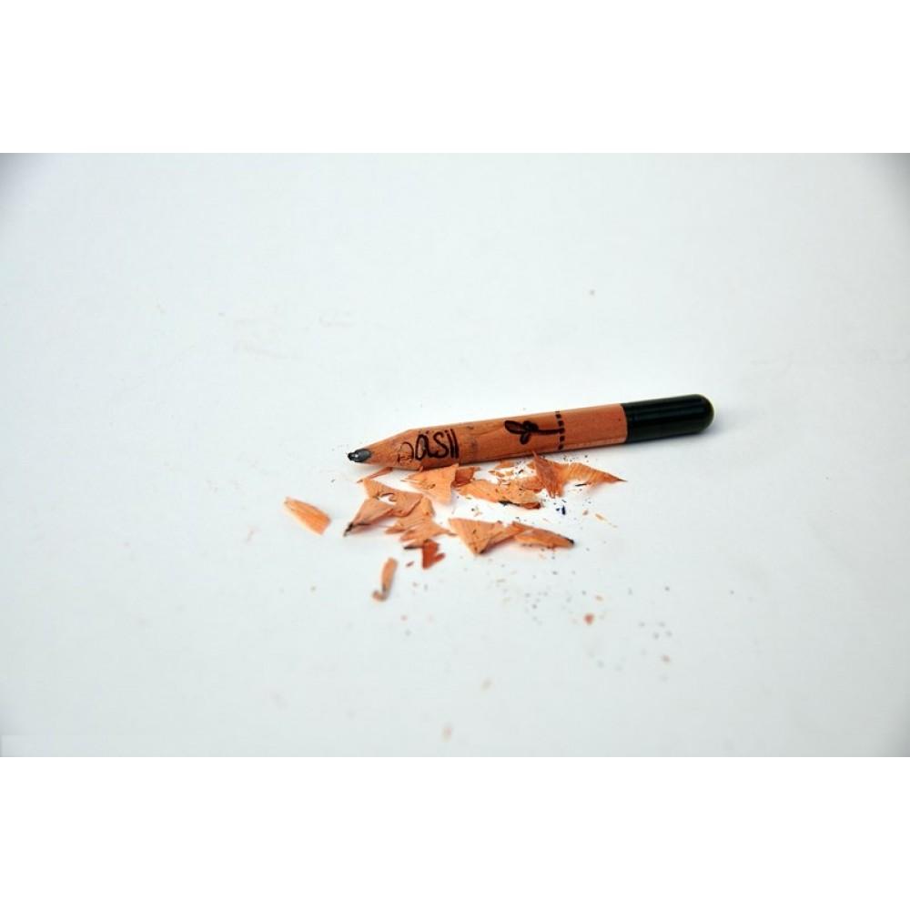 Sprout plant din blyant flere varianter-01