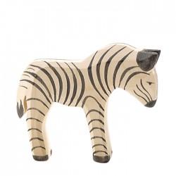 Ostheimer lille zebra-20