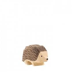 Ostheimer lille pindsvin-20