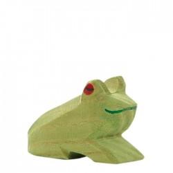 Ostheimer lille grøn frø-20