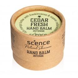 Scence økologisk and vegansk håndcreme cedar fresh-20