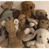 Kallisto økologisk bamse klassisk mørkebrun bjørn-01