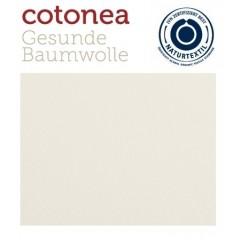 COTONEA - økologisk stræklagen - natur