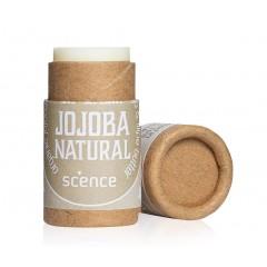 Scence - økologisk & vegansk læbepomade - natural