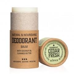 Scence - økologisk & vegansk deodorant - cedar fresh